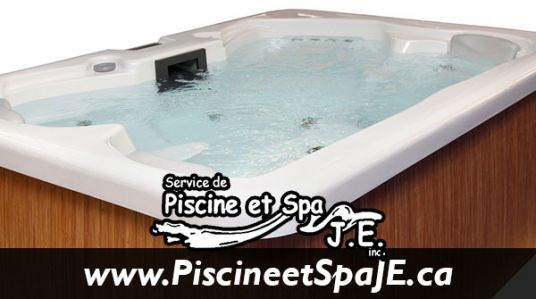 Piscine et spa j e services de r paration de piscines for Filtreur piscine creusee
